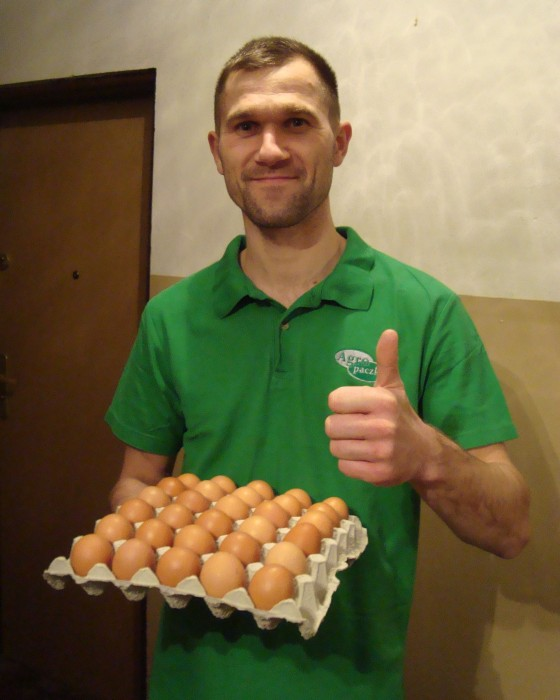 dostawa-jajka-kurze