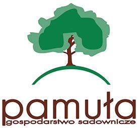 Logo Soki Pamuła